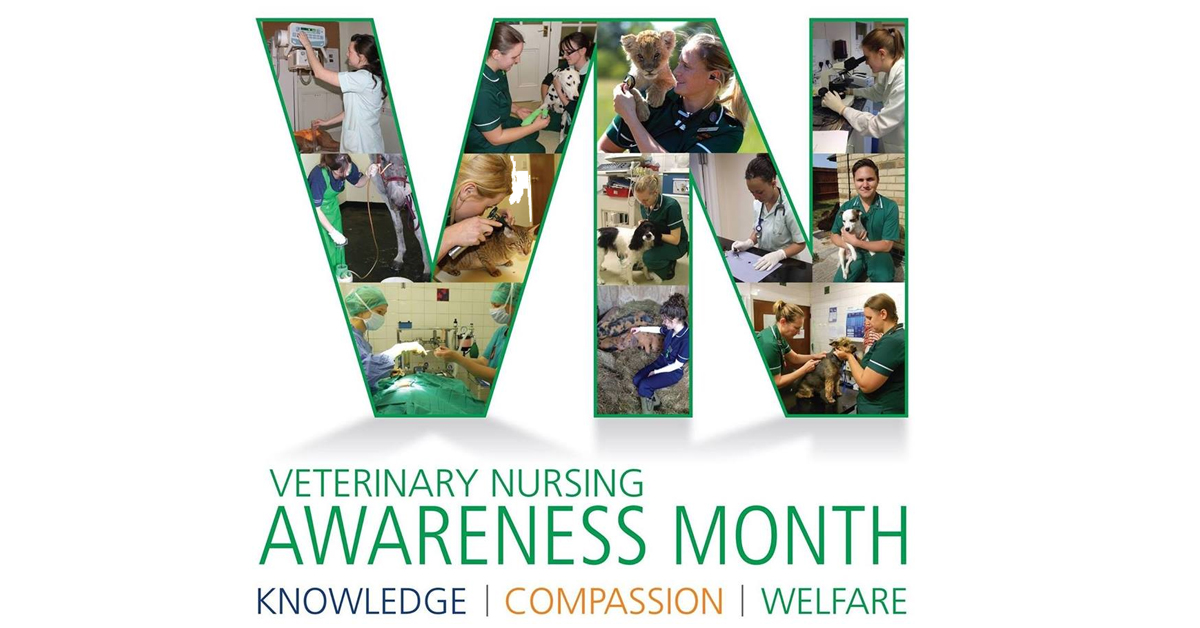 Celebrate Veterinary Nursing Awareness Month with us